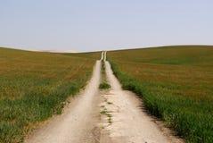ensam väg för fält Arkivbild