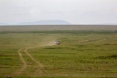 Ensam väg i Serengetien royaltyfri fotografi