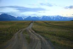 Ensam väg som leder till den avlägsna Altay Mountains royaltyfria foton