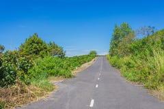 Ensam väg till och med det gröna fältet Arkivfoto