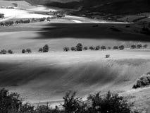 Ensam vagn på fältet Arkivbild