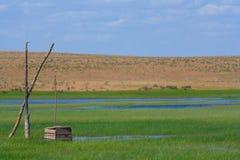 ensam well för fågel Arkivbilder