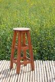 Ensam wood stol i fält Royaltyfri Bild