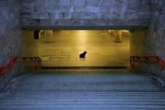 ensamhet Arkivbild