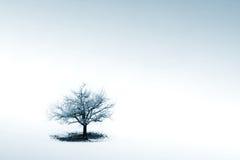 ensamhet Arkivfoto