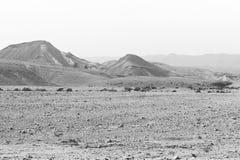 Ensamhet och tomhet av öknen royaltyfri fotografi