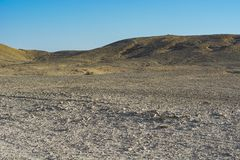 Ensamhet och tomhet av öknen fotografering för bildbyråer