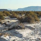 Ensamhet och tomhet av öknen arkivbilder