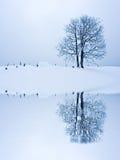 ensamhetstanding fotografering för bildbyråer