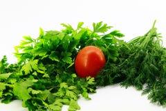 Ensamma röda lögner för en tomat som omges av grönska fotografering för bildbyråer