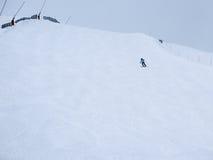 Ensamma skidåkare Arkivfoto