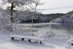 Ensamma Snö-klädda bänkar Arkivfoto