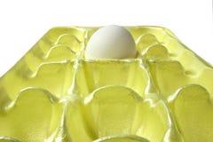 ensamt ägg Arkivfoton