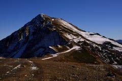 ensamt berg Arkivfoto