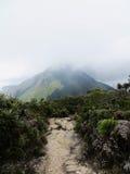 ensamt berg Arkivbild