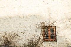 ensamt fönster royaltyfria foton