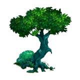 Ensamt gammalt lövfällande träd som isoleras på vit bakgrund Illustration för vektortecknad filmnärbild royaltyfri illustrationer
