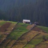 Ensamt hus av berget Carpatian Arkivfoto