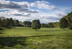 Ensamt lönnträd i en Hudson Valley Hayfield royaltyfri fotografi