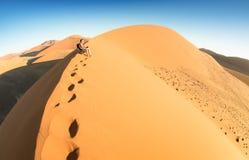 Ensamt mansammanträde på sand på dyn 45 i Sossusvlei Namibia Arkivfoton