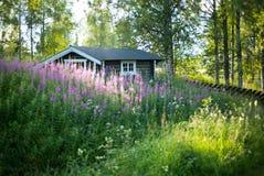 Ensamt romantiskt hus i skogen arkivbild