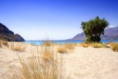 ensamt sandigt för strand Royaltyfri Bild