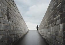 Ensamt soldatanseende på vakten på en historisk fortingång arkivfoton