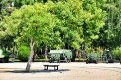 Ensamt träd och en bänk i museet av militär härlighet royaltyfri fotografi