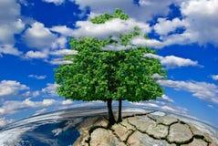 Ensamt träd på en öde planet bland molnen. (Beståndsdelar av detta bild som möbleras av NASA) Arkivfoton