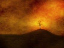 Ensamt träd på grungy bakgrund Arkivbild