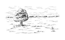 Ensamt trädanseende i mitt av fältet royaltyfri illustrationer