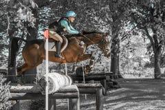 Ensayos de caballo internacionales de Houghton Chloe Lynn que monta Calzini Fotografía de archivo