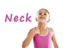 Enseñe la tarjeta de la muchacha que señala en su cuello y garganta en el fondo blanco imagenes de archivo