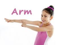 Enseñe la tarjeta de la muchacha que señala en su brazo y codo en el fondo blanco Fotografía de archivo libre de regalías