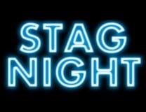 Enseigne au néon de nuit de mâle Photos libres de droits