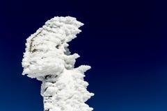 Enseigne congelée de touristes Image libre de droits