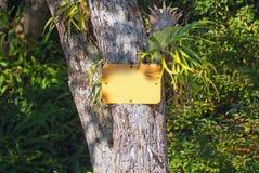 Enseigne vide dans un environnement tropical de forêt Photo libre de droits