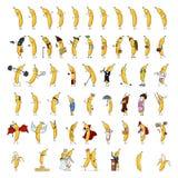 Ensemble énorme de vecteur de différents caractères de banane de bande dessinée illustration libre de droits