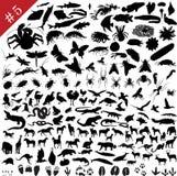 # ensemble 5 de silhouettes animales illustration de vecteur