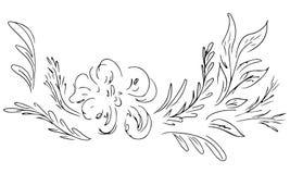 Ensemble abstrait tir? par la main de wildflowers d'isolement sur le blanc ?l?ments de conception florale pour votre carte de voe illustration libre de droits