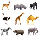 Ensemble africain de vecteur d'animaux Photo stock