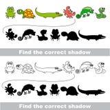 Ensemble amphibie Trouvez l'ombre correcte illustration stock