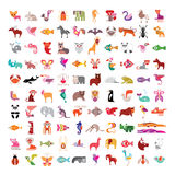 Ensemble animal d'icône Images stock