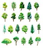 Ensemble arbres tirés par la main d'aquarelle de différents Images stock