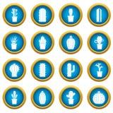 Ensemble bleu de cercle de différentes icônes de cactus Photographie stock libre de droits