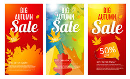 Ensemble brillant d'Autumn Leaves Sale Banner Template Remise d'affaires Photographie stock