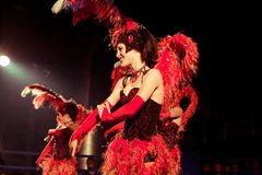 Ensemble cabaret Stock Photography