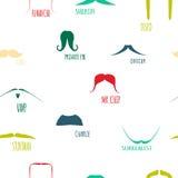 Ensemble coloré d'icône de moustache de hippie Photographie stock libre de droits