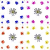 Ensemble coloré floral de fond de modèle Image stock