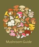 Ensemble comestible de champignon Icônes plates Fond rond illustration de vecteur
